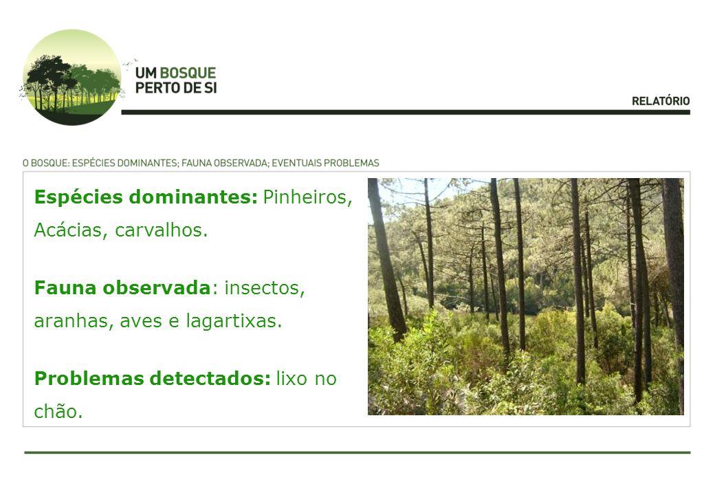 Espécies dominantes: Pinheiros, Acácias, carvalhos.