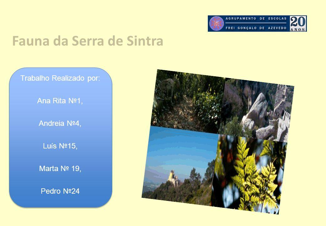Fauna da Serra de Sintra
