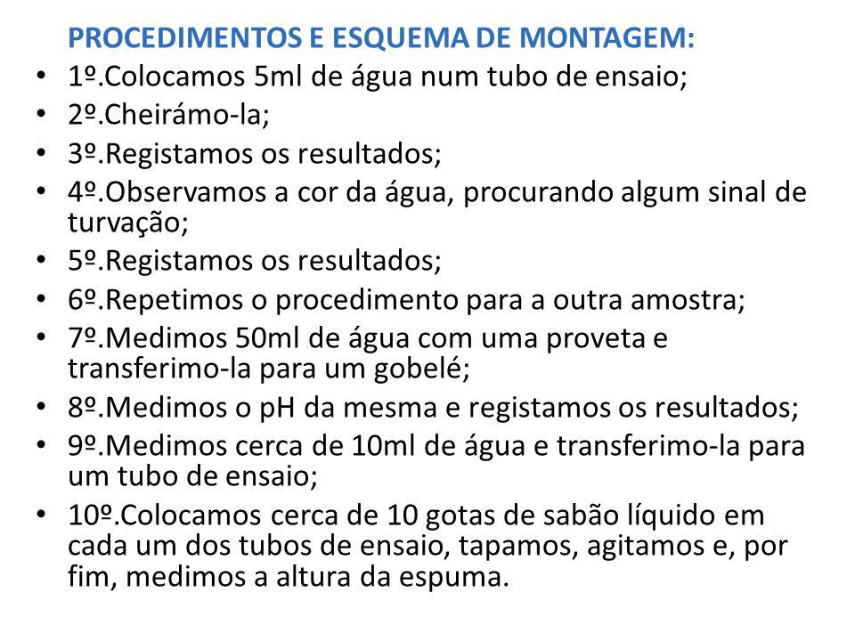 PROCEDIMENTOS E ESQUEMA DE MONTAGEM: