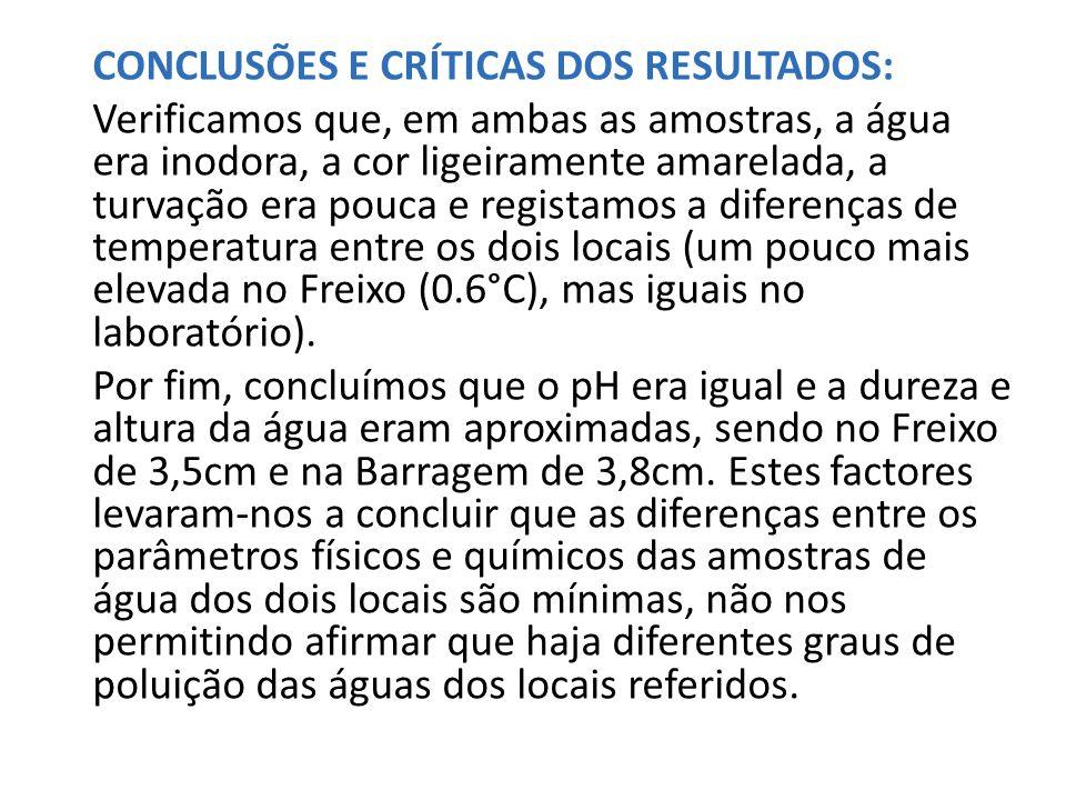 CONCLUSÕES E CRÍTICAS DOS RESULTADOS: