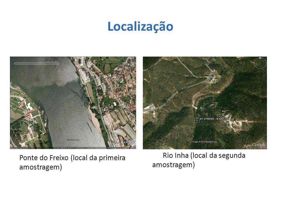 Localização Rio Inha (local da segunda amostragem)