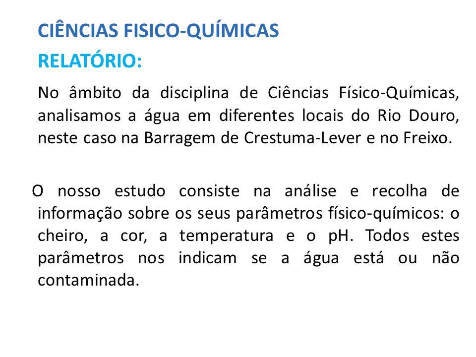 CIÊNCIAS FISICO-QUÍMICAS RELATÓRIO:
