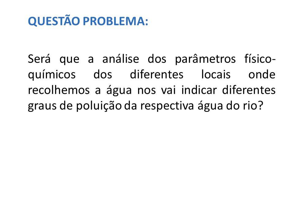 QUESTÃO PROBLEMA: