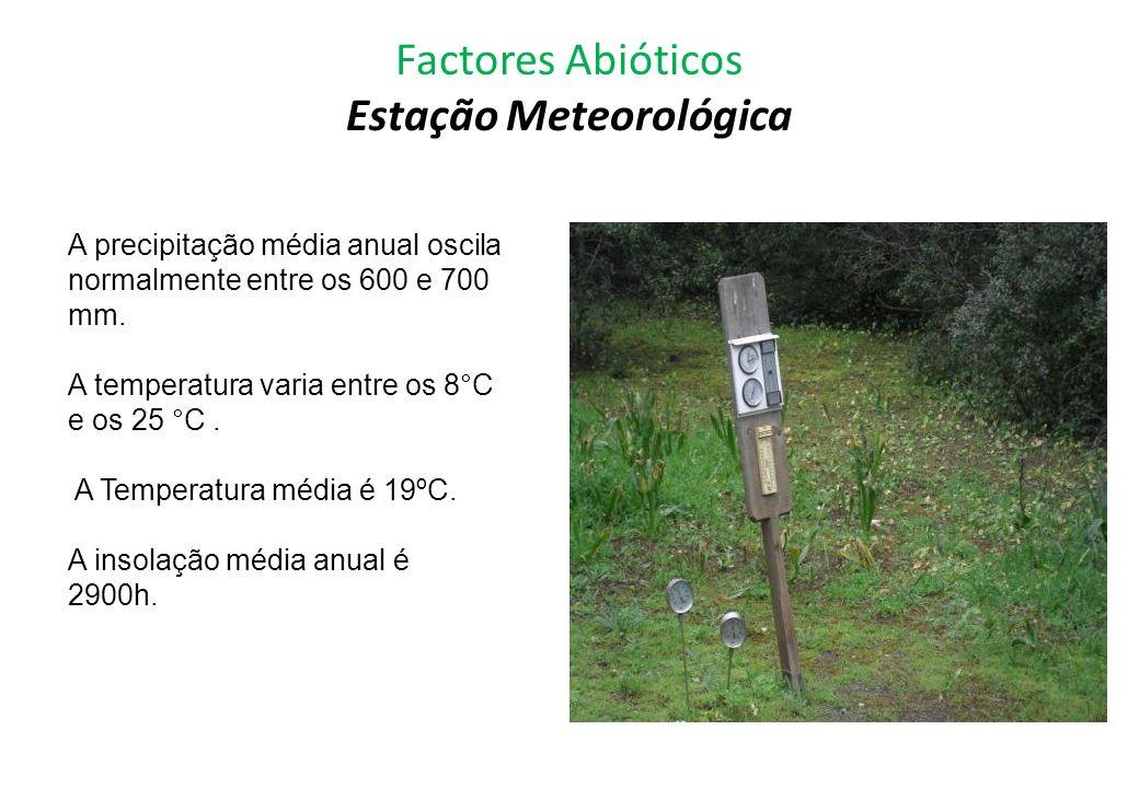 Factores Abióticos Estação Meteorológica