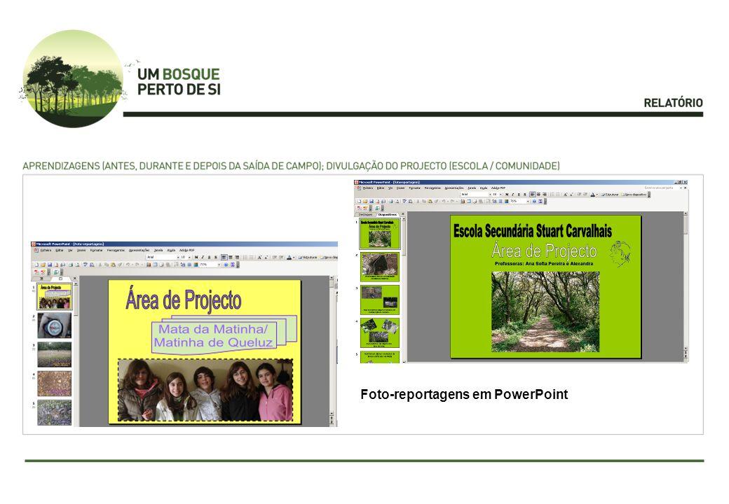 Foto-reportagens em PowerPoint
