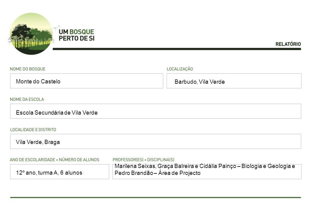 Monte do Castelo Barbudo, Vila Verde. Escola Secundária de Vila Verde. Vila Verde, Braga.