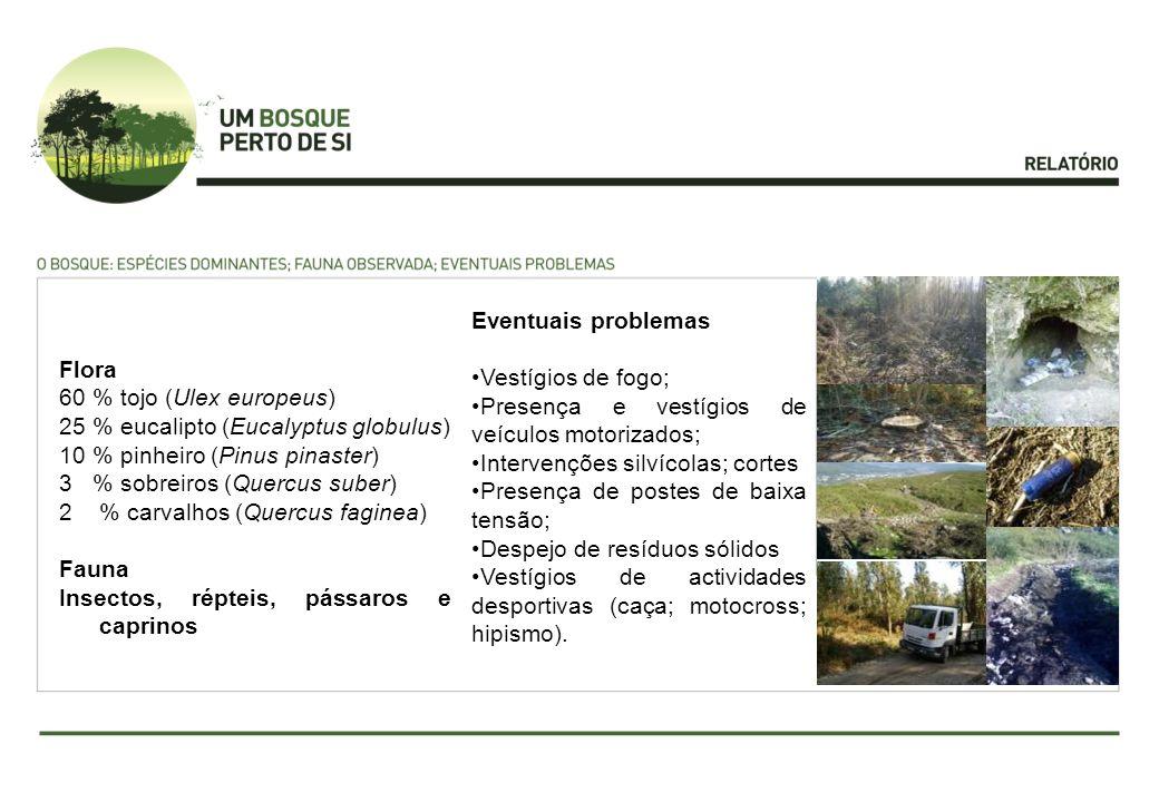 Eventuais problemas Vestígios de fogo; Presença e vestígios de veículos motorizados; Intervenções silvícolas; cortes.