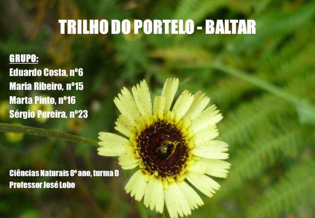 TRILHO DO PORTELO - BALTAR