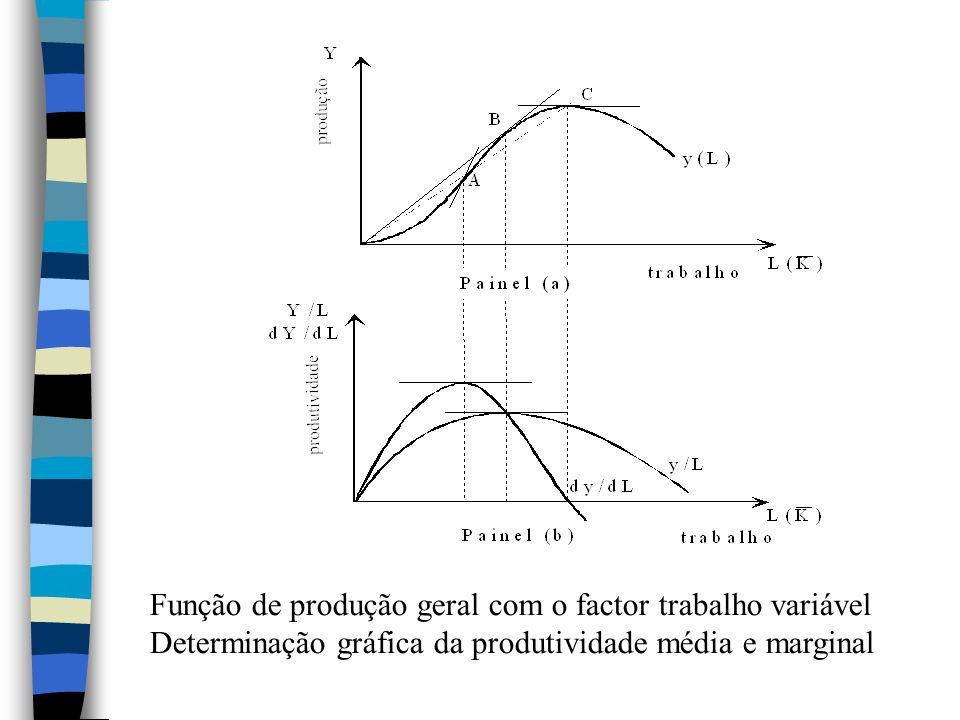 Função de produção geral com o factor trabalho variável