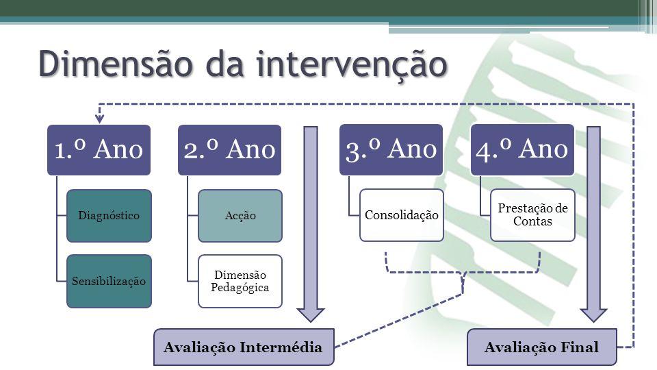 Dimensão da intervenção