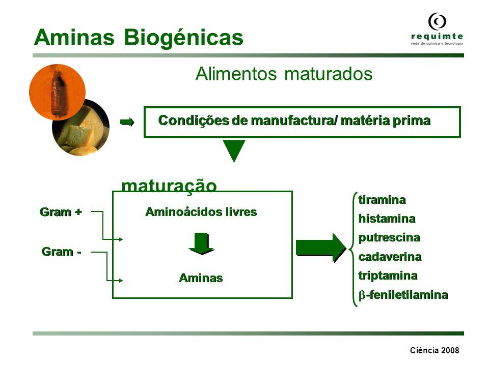 Aminas Biogénicas Alimentos maturados maturação