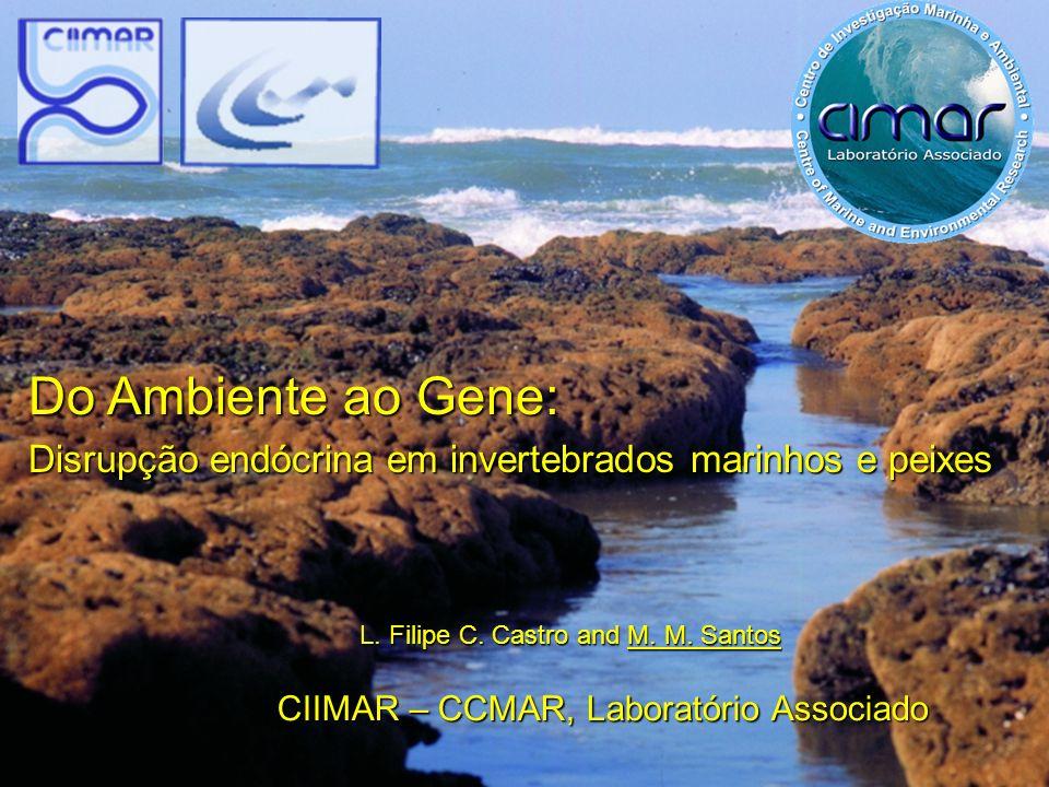 Do Ambiente ao Gene: Disrupção endócrina em invertebrados marinhos e peixes. L. Filipe C. Castro and M. M. Santos.