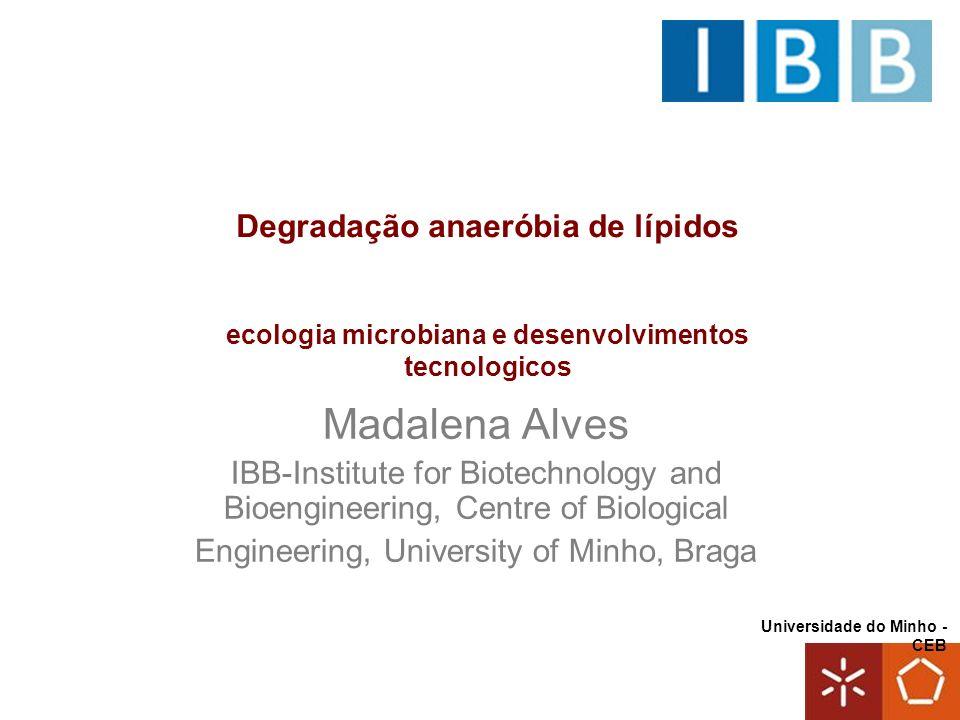 Madalena Alves Degradação anaeróbia de lípidos