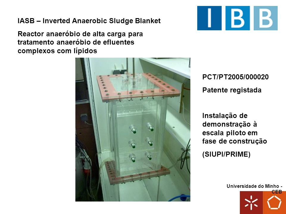 IASB – Inverted Anaerobic Sludge Blanket