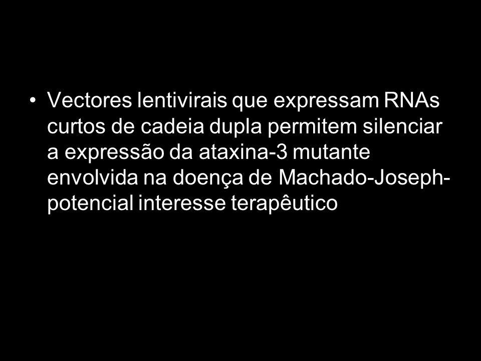 Vectores lentivirais que expressam RNAs curtos de cadeia dupla permitem silenciar a expressão da ataxina-3 mutante envolvida na doença de Machado-Joseph- potencial interesse terapêutico