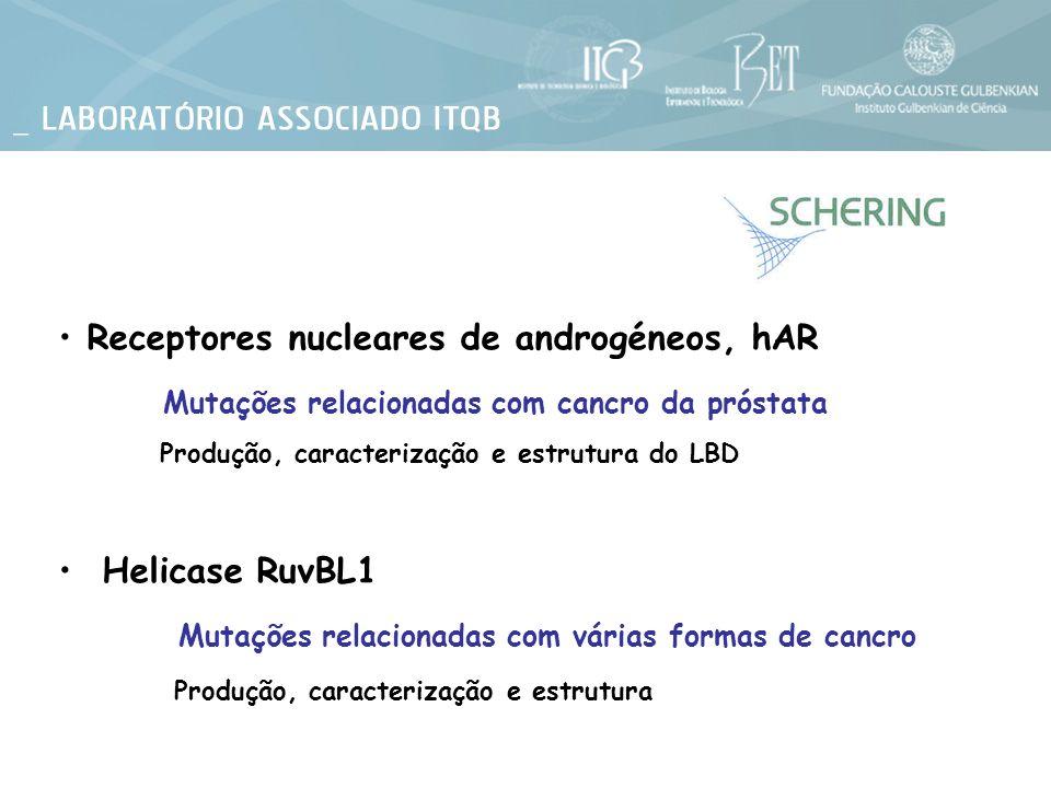 Receptores nucleares de androgéneos, hAR