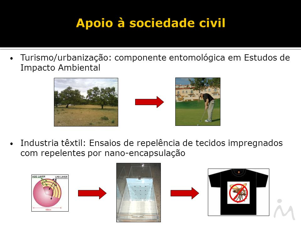 Apoio à sociedade civil