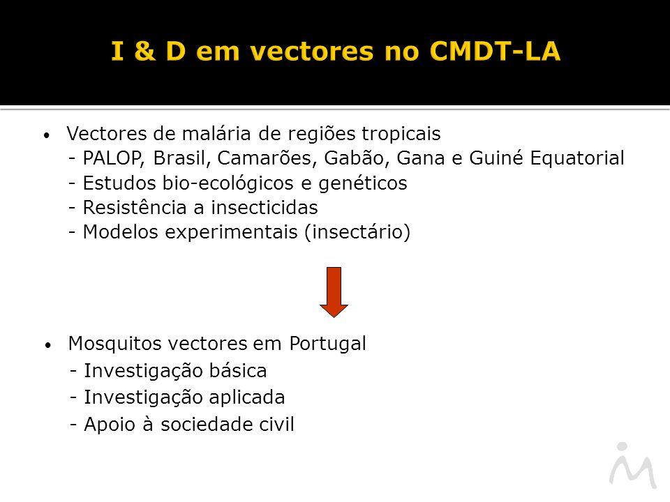 I & D em vectores no CMDT-LA