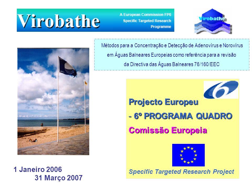 Projecto Europeu 6º PROGRAMA QUADRO Comissão Europeia 1 Janeiro 2006