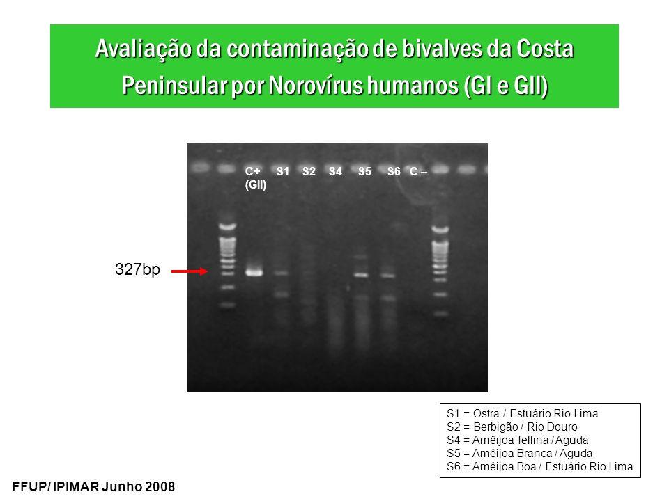 Avaliação da contaminação de bivalves da Costa Peninsular por Norovírus humanos (GI e GII)