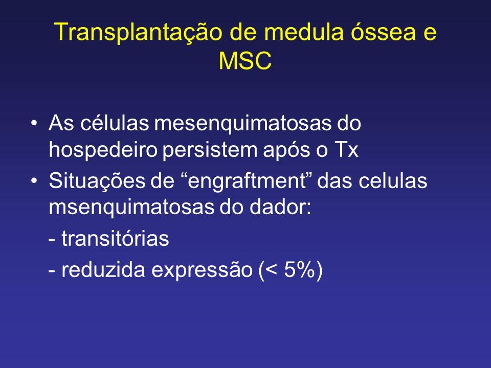 Transplantação de medula óssea e MSC