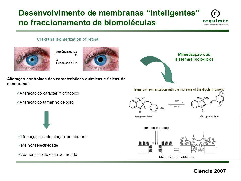 Desenvolvimento de membranas inteligentes no fraccionamento de biomoléculas