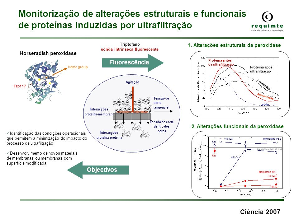 Horseradish peroxidase