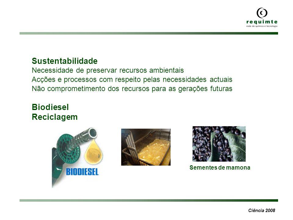 Sustentabilidade Biodiesel Reciclagem
