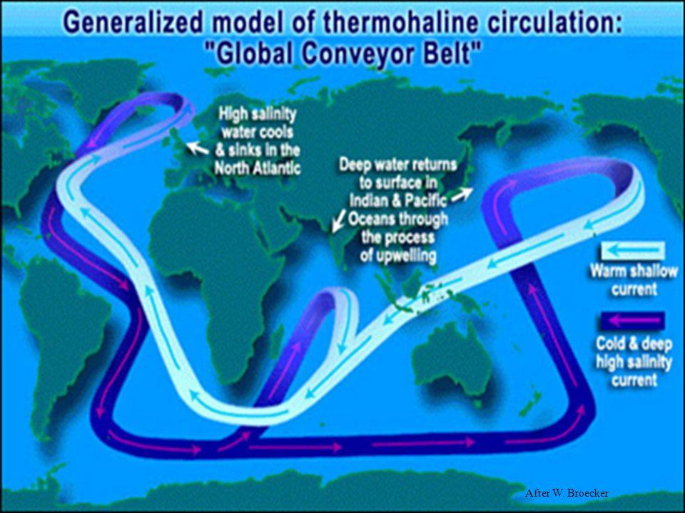 a circulação no interior do oceano, determinada pela densidade da água, circulação termohalina, É UMA CIRCULAÇÃO GLOBAL QUE É GERALMENTE VISUALIZADA COMO UM TAPETE ROLANTE