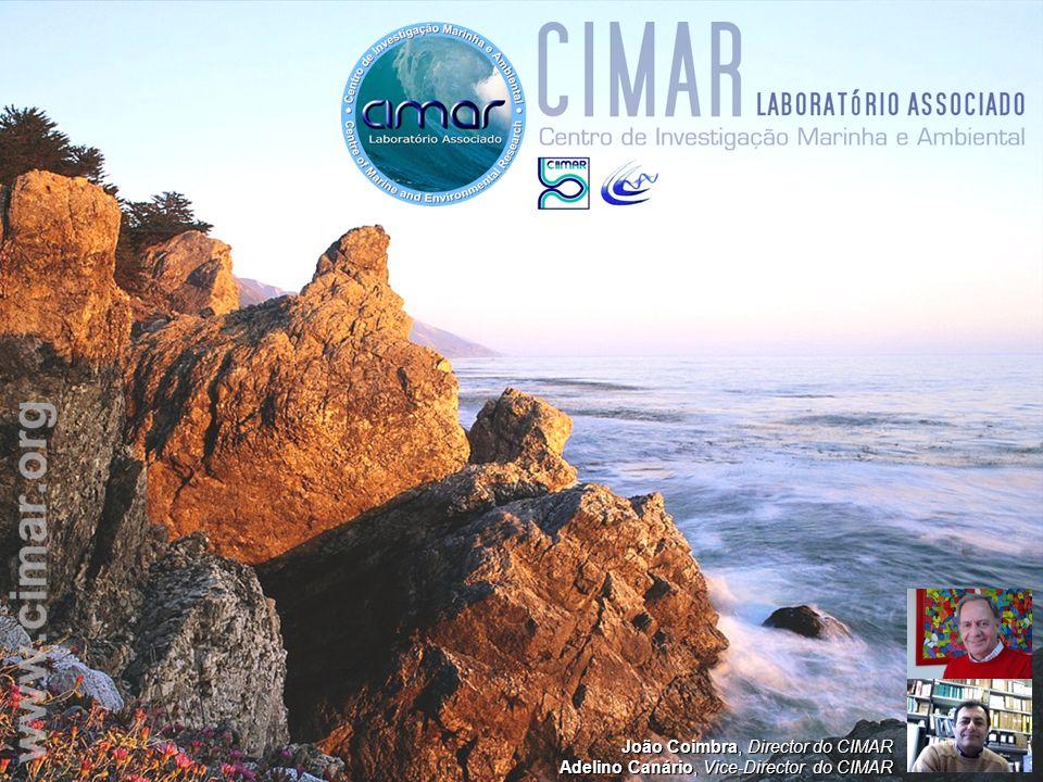 João Coimbra, Director do CIMAR