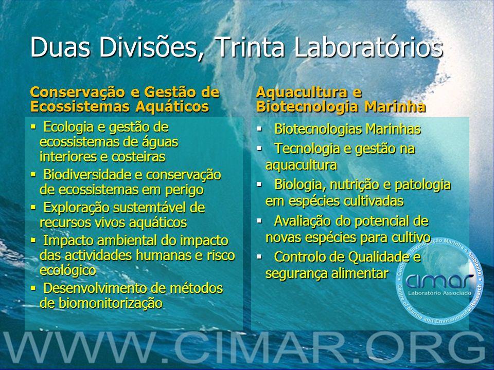 Duas Divisões, Trinta Laboratórios