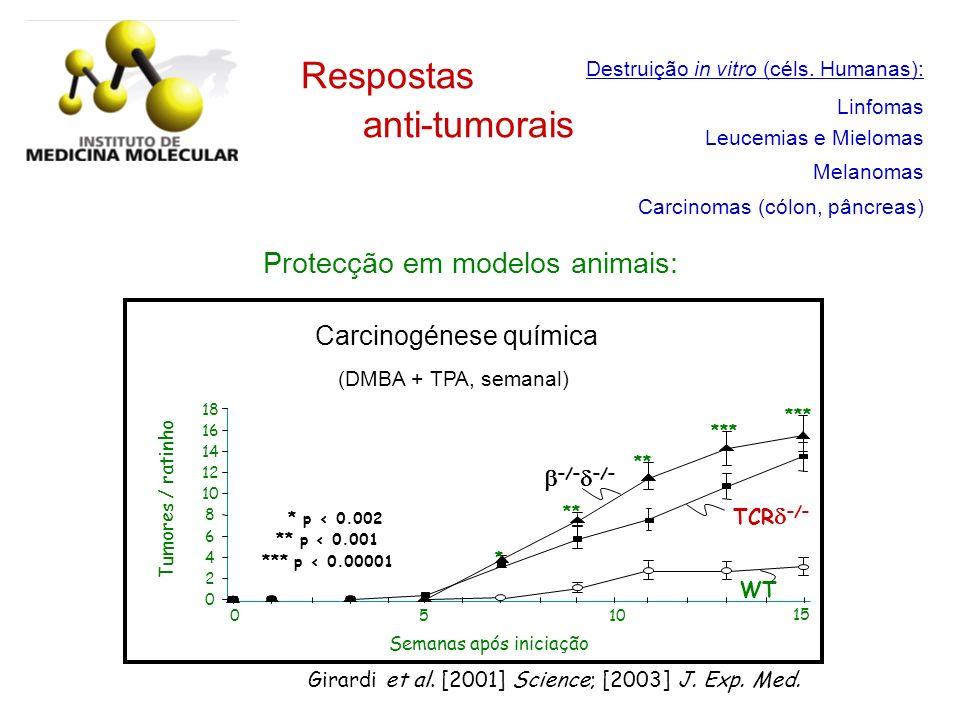 Respostas anti-tumorais Protecção em modelos animais:
