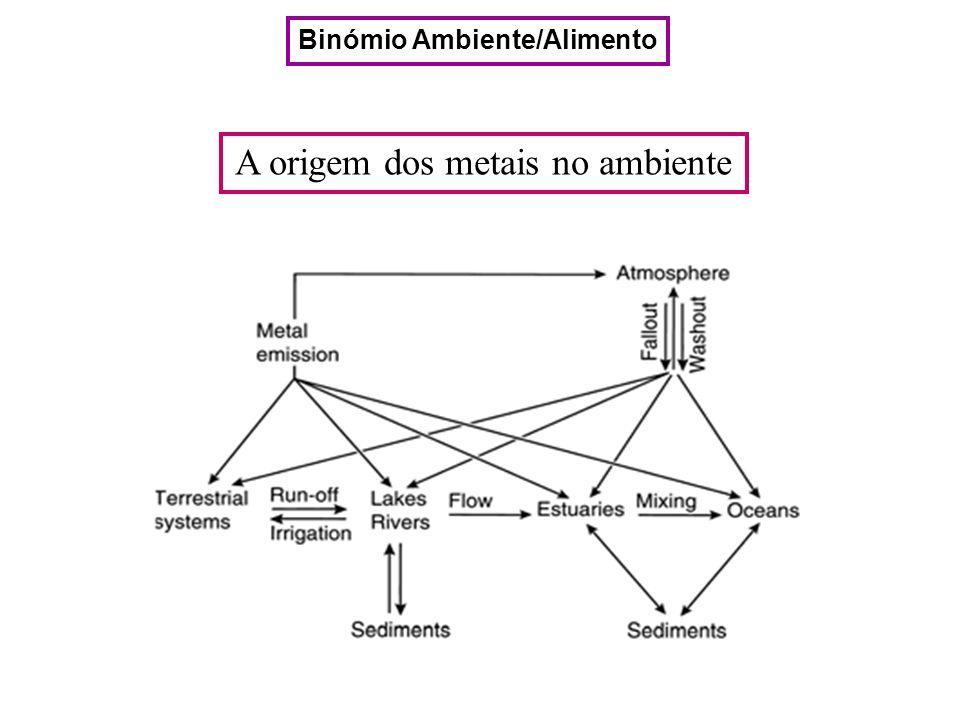 A origem dos metais no ambiente