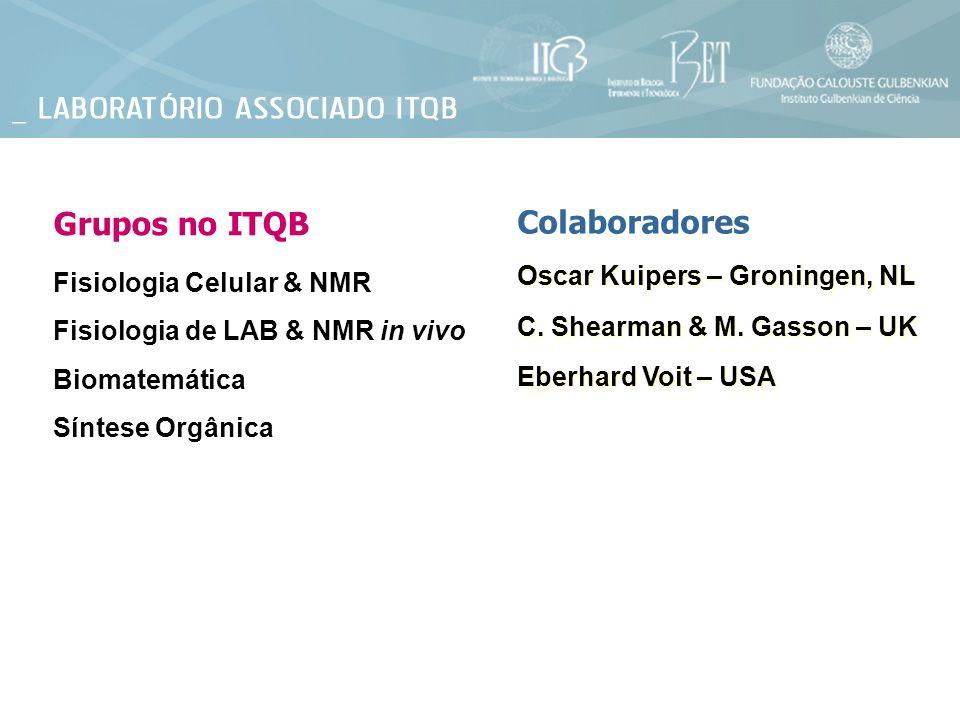 Grupos no ITQB Colaboradores Oscar Kuipers – Groningen, NL