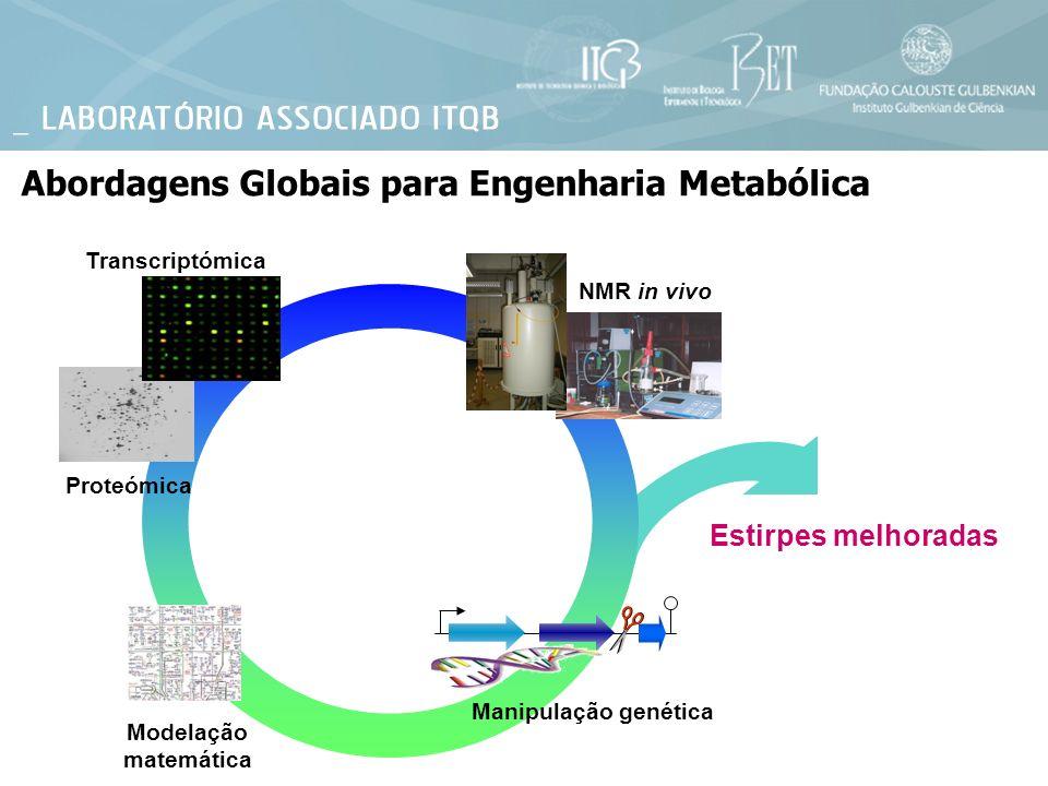Abordagens Globais para Engenharia Metabólica