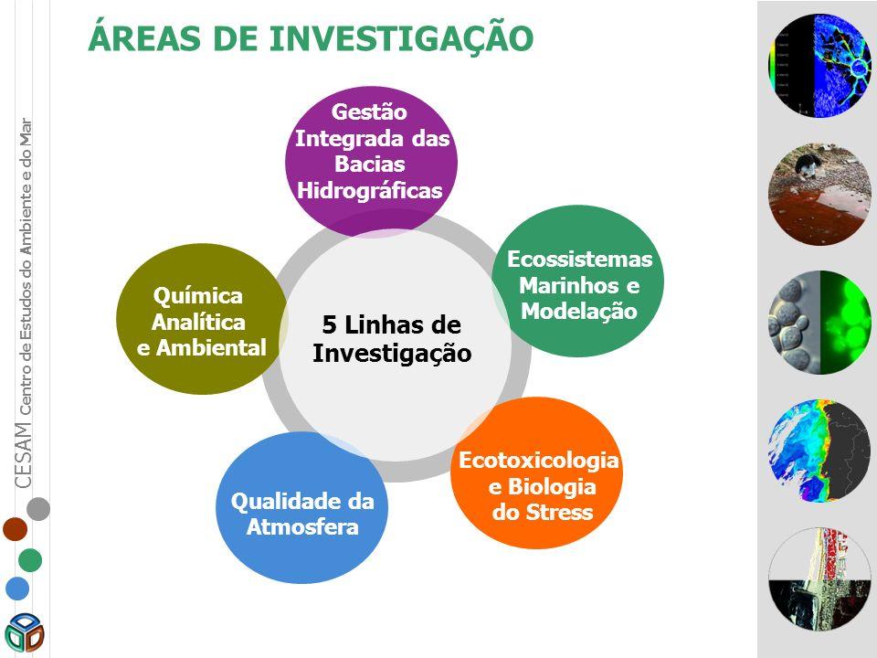 ÁREAS DE INVESTIGAÇÃO 5 Linhas de Investigação Gestão