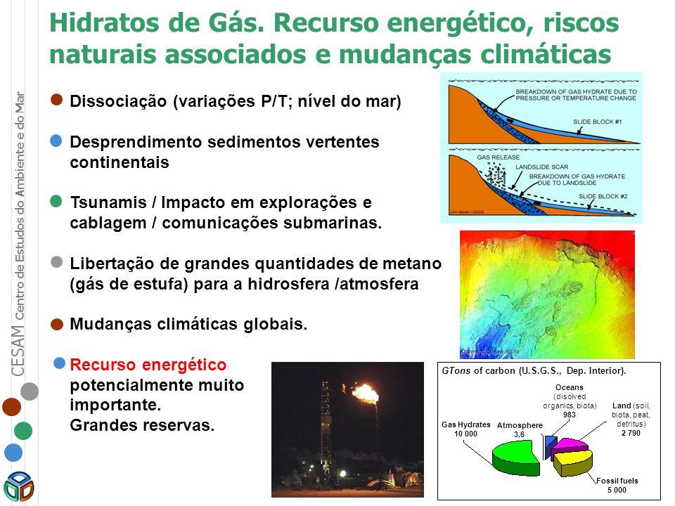 Hidratos de Gás. Recurso energético, riscos naturais associados e mudanças climáticas