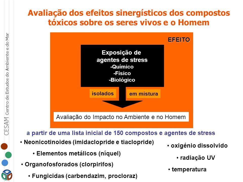 Avaliação dos efeitos sinergísticos dos compostos tóxicos sobre os seres vivos e o Homem