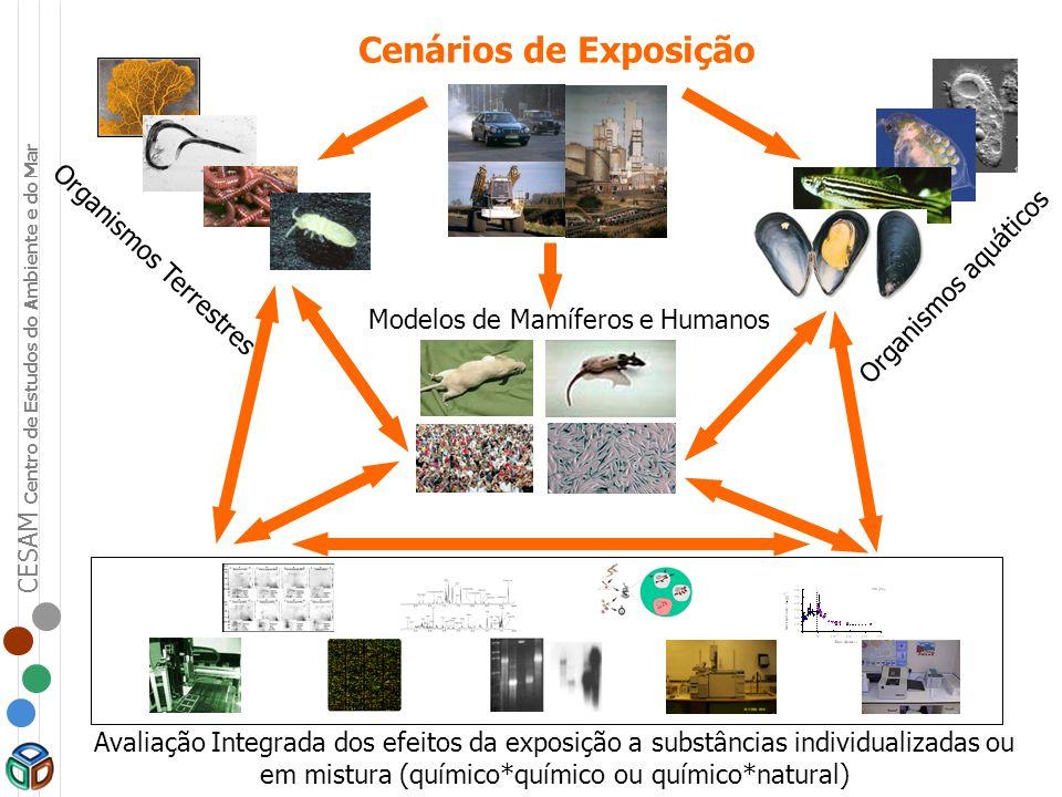 Cenários de Exposição Organismos aquáticos