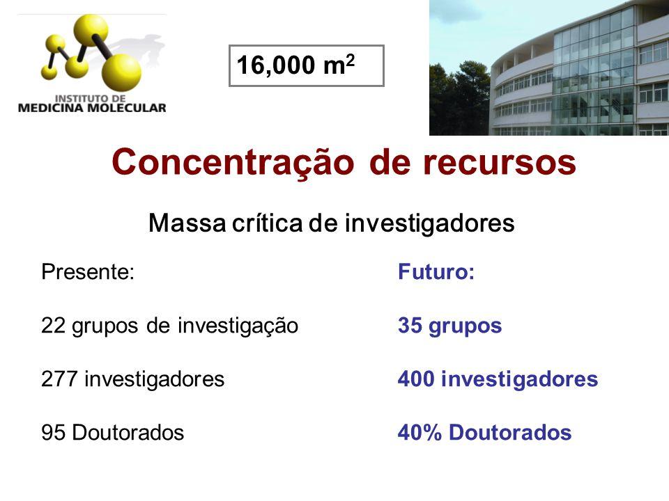 Concentração de recursos Massa crítica de investigadores