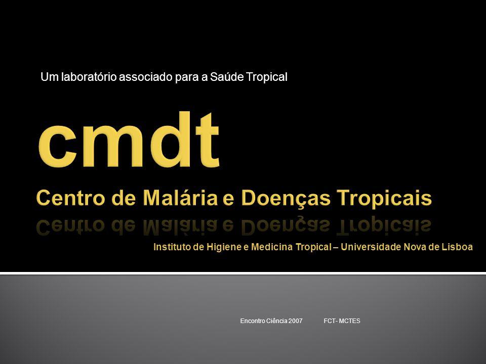 cmdt Centro de Malária e Doenças Tropicais