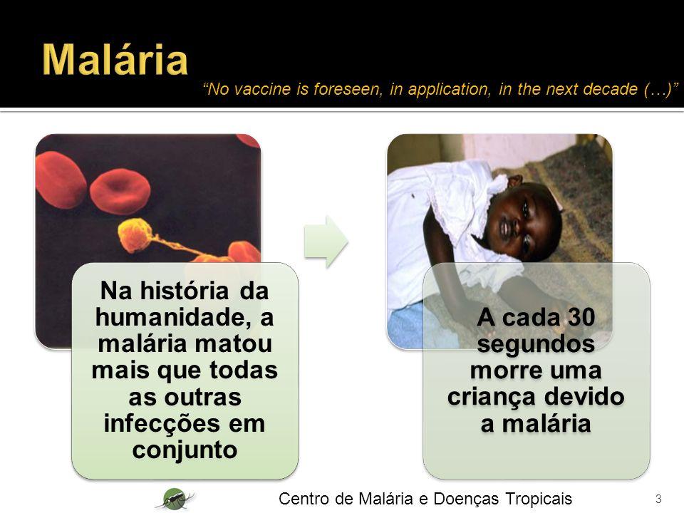 A cada 30 segundos morre uma criança devido a malária