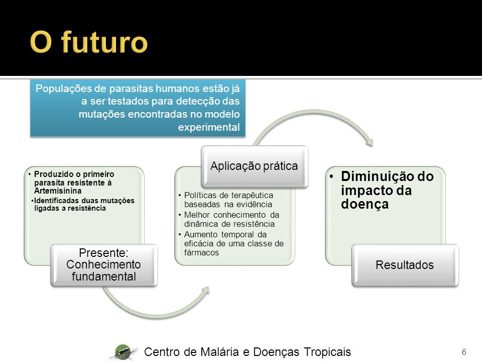 Presente: Conhecimento fundamental