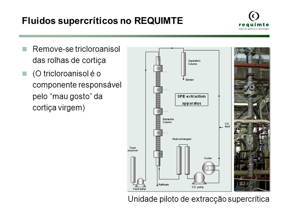 Fluidos supercríticos no REQUIMTE