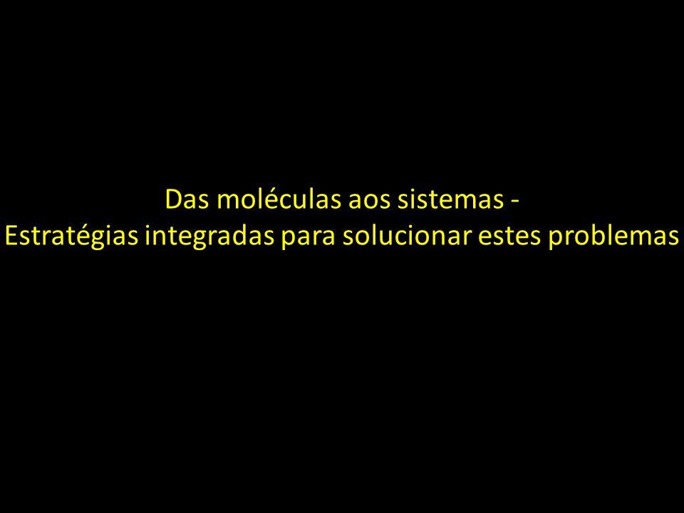 Das moléculas aos sistemas -