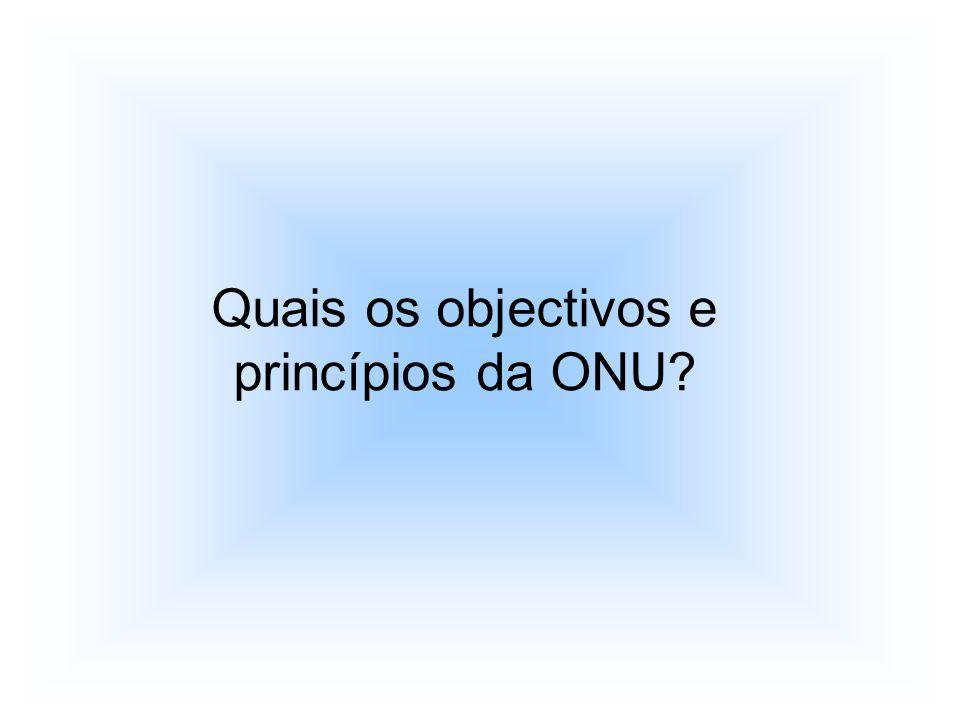 Quais os objectivos e princípios da ONU