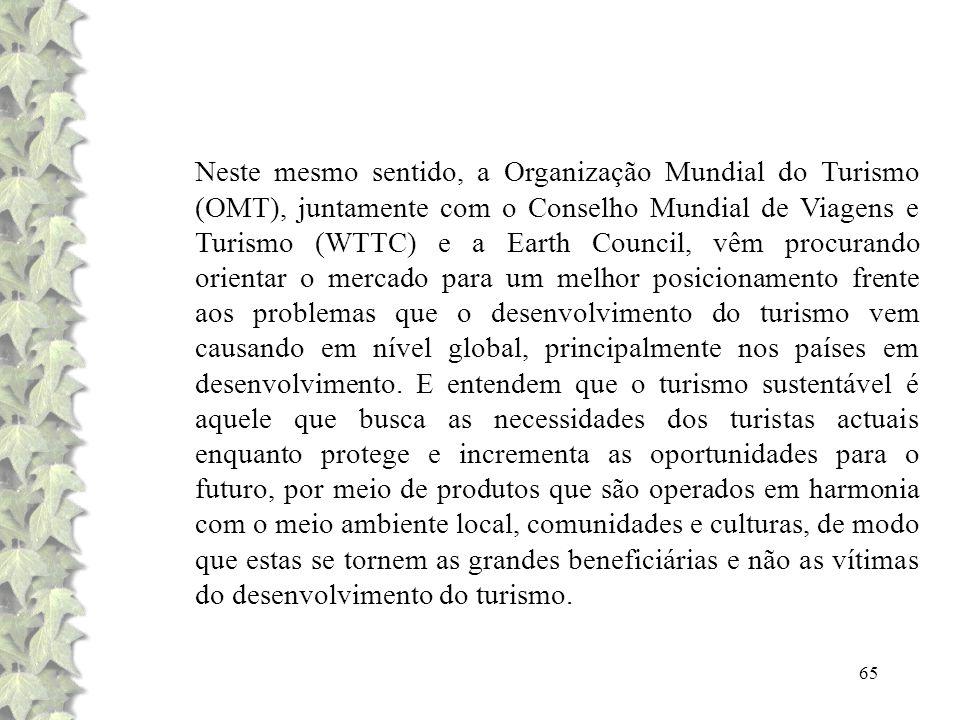 Neste mesmo sentido, a Organização Mundial do Turismo (OMT), juntamente com o Conselho Mundial de Viagens e Turismo (WTTC) e a Earth Council, vêm procurando orientar o mercado para um melhor posicionamento frente aos problemas que o desenvolvimento do turismo vem causando em nível global, principalmente nos países em desenvolvimento.