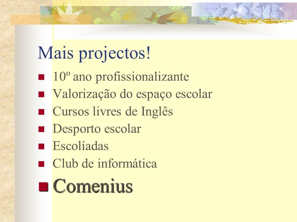 Comenius Mais projectos! 10º ano profissionalizante