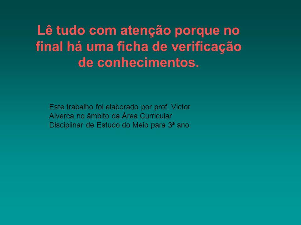 autor:victor alverca Lê tudo com atenção porque no final há uma ficha de verificação de conhecimentos.