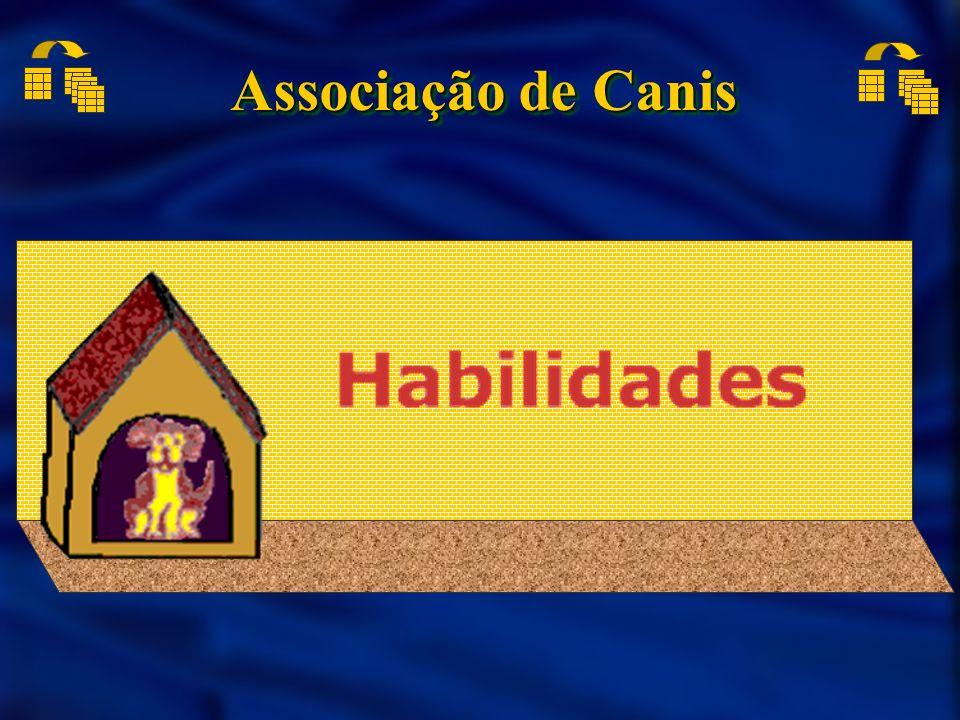 Associação de Canis